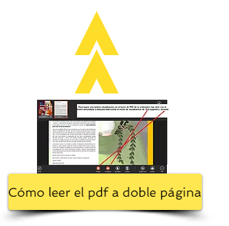 cómo leer el pdf correctamente